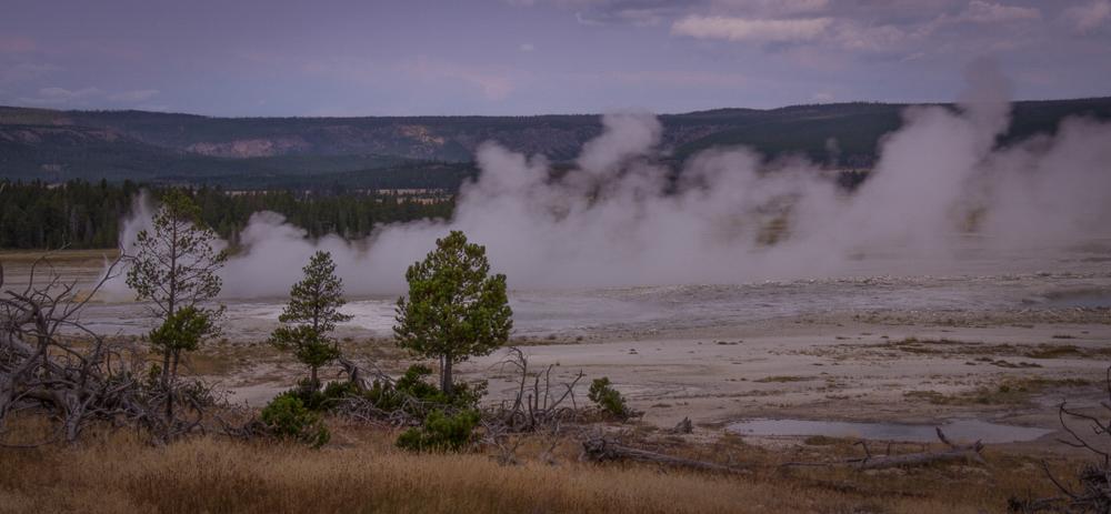 Geyser Basin - 4, Yellowstone