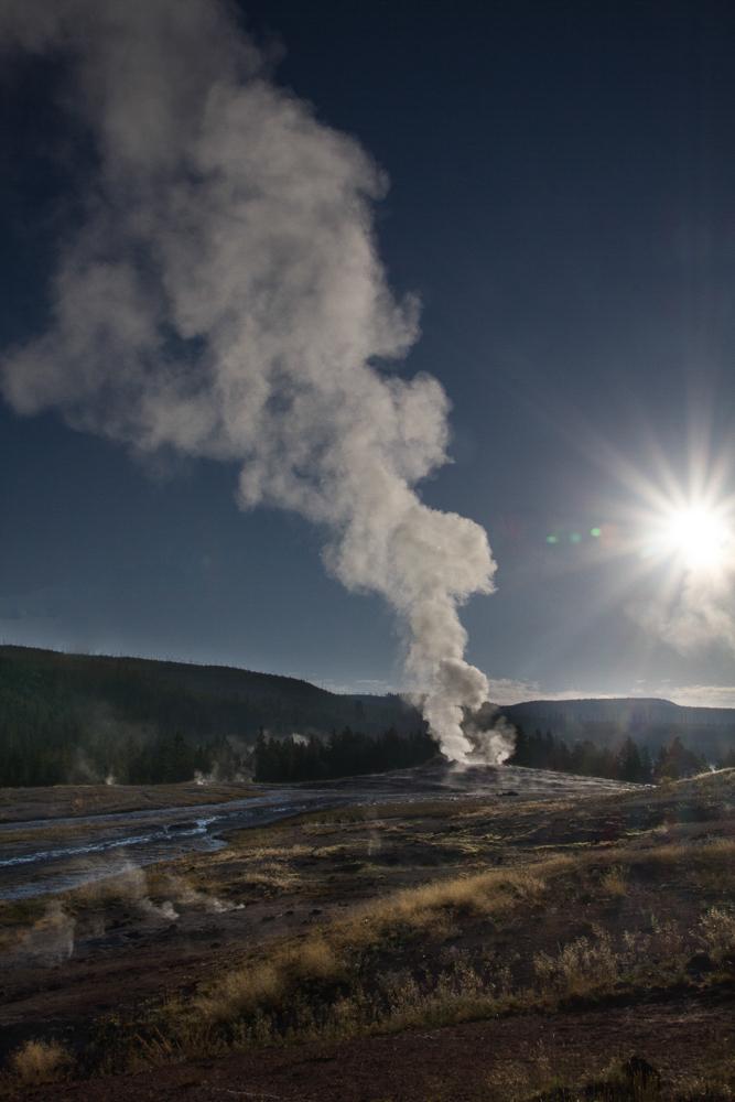 Old Faithful, Dawn, Yellowstone
