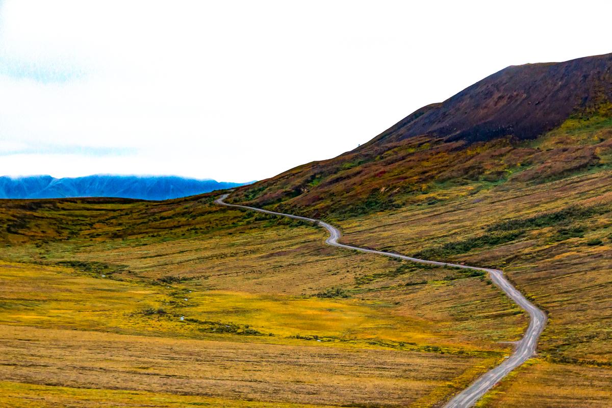 Denali park road