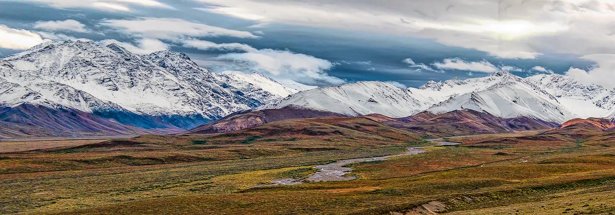 Fall foliage on the Alaska Range