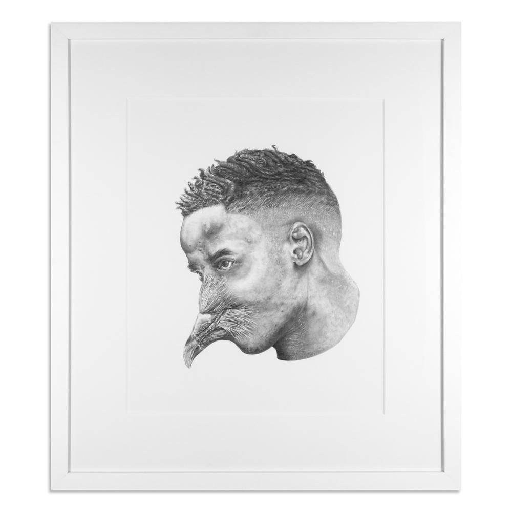 "Eastside Aviary 28"" x 32"" Graphite on Paper $950"