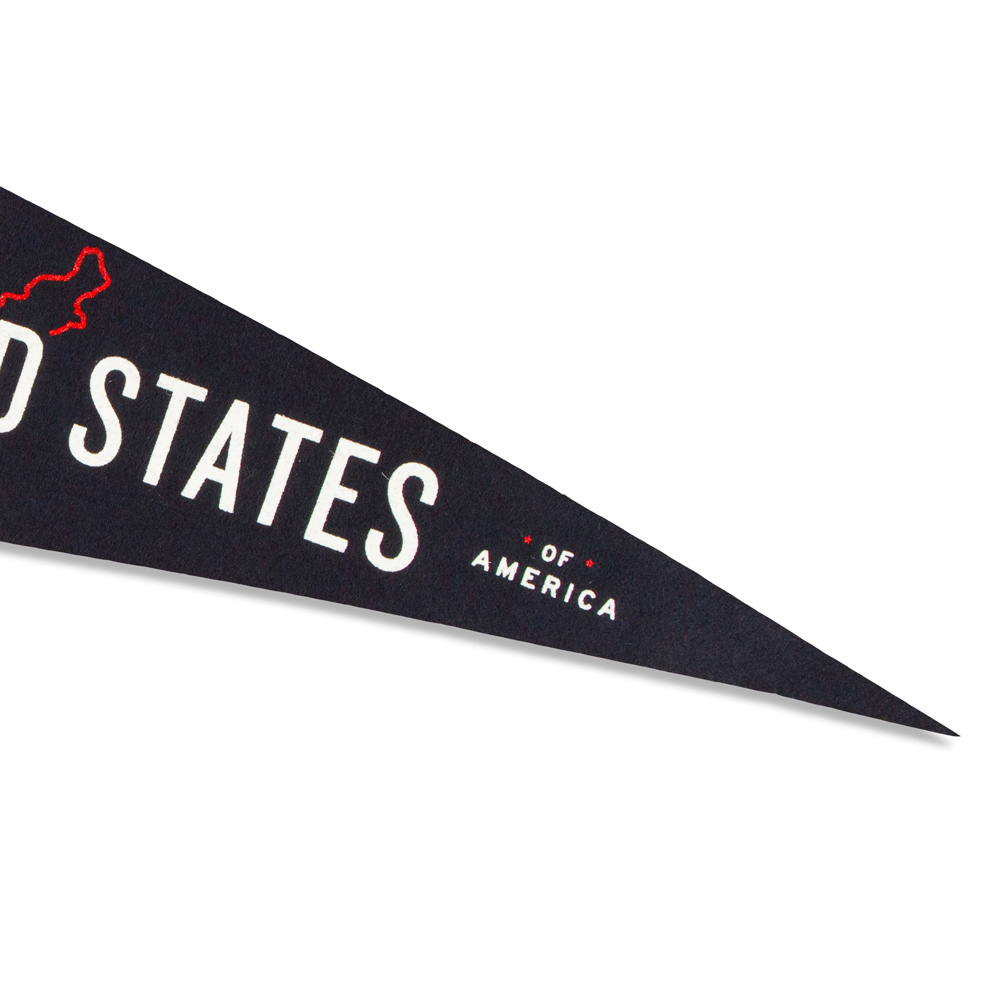 good-pals-usa-pennant-7.5x15-collector-preview-03.jpg