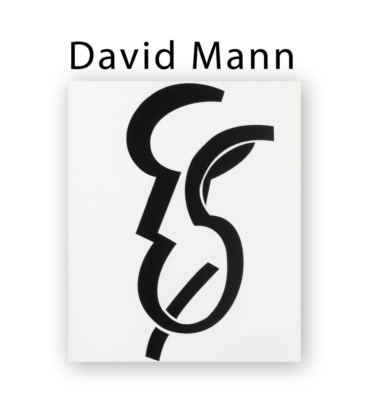 david mann icone.jpg