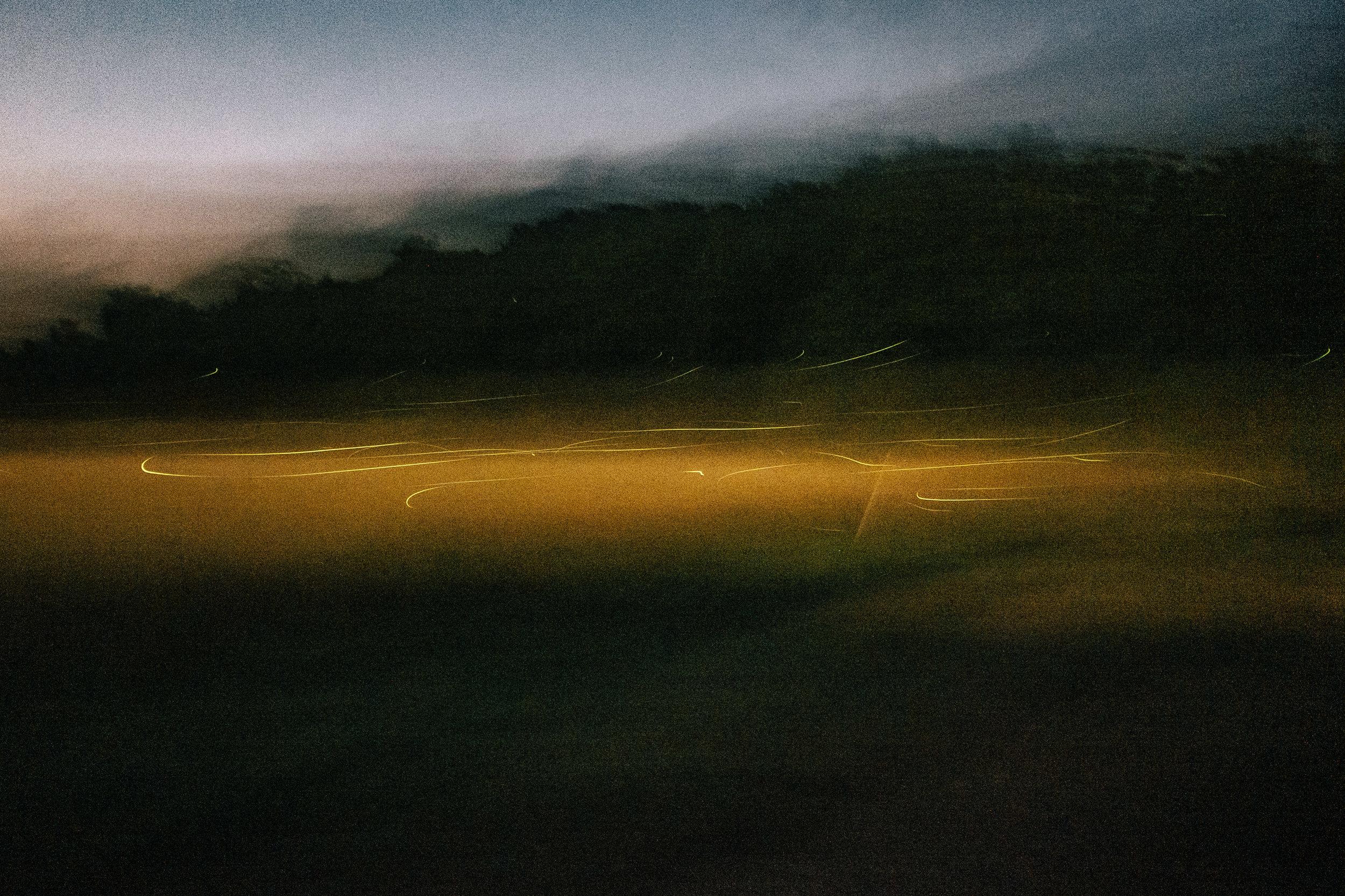 Fireflies-5.jpg