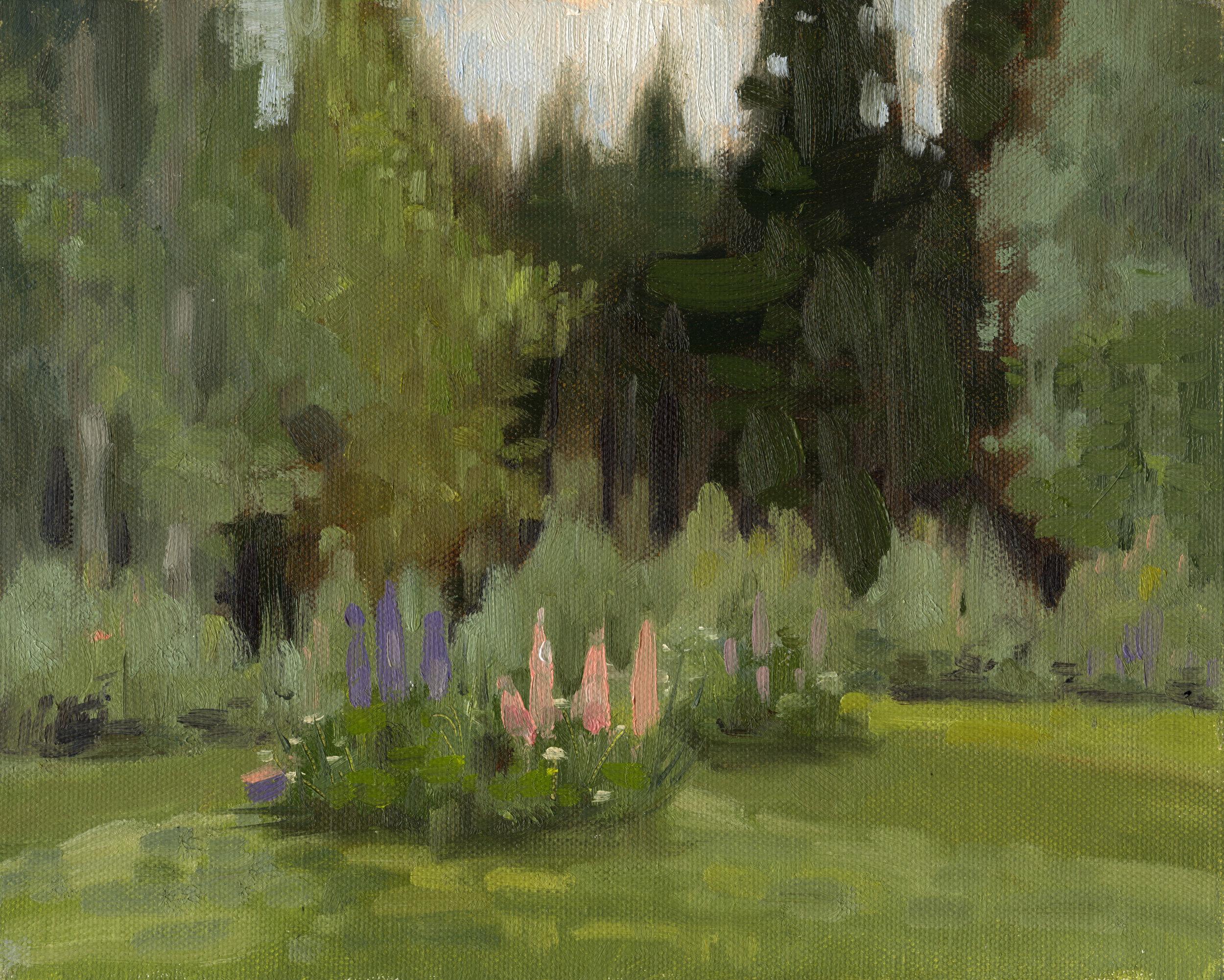Garden in Sweden