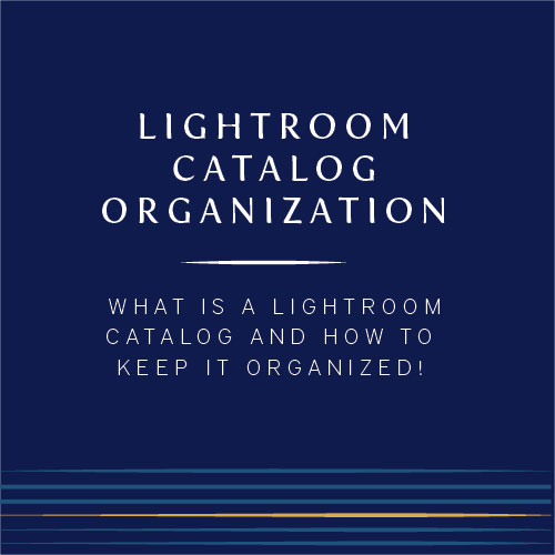 How do I organize my lightroom catalog? | Cinnamon Wolfe Photography | North New Jersey Wedding Photographer