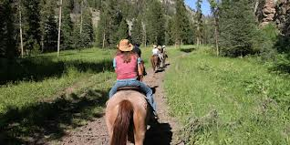 Take a trial ride at Alpine Stables