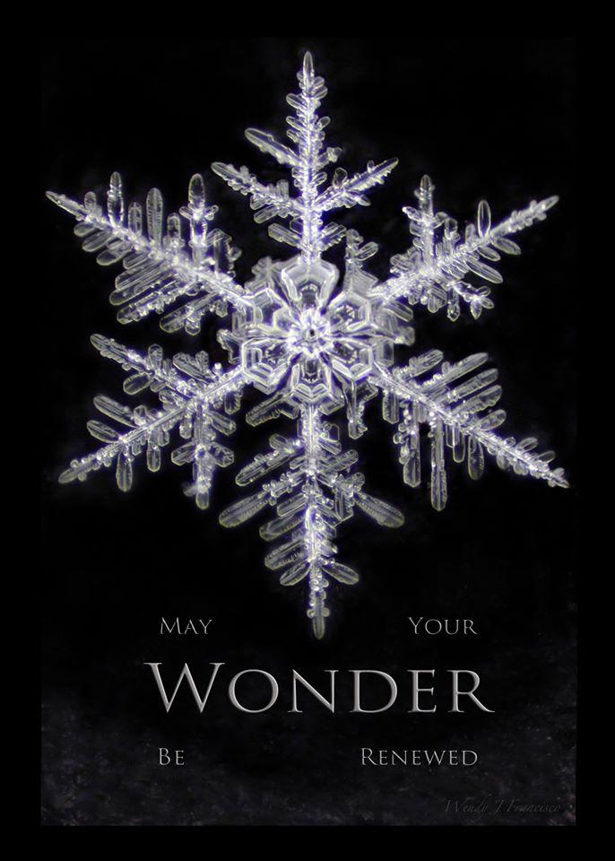 May your wonder be renewed.jpg