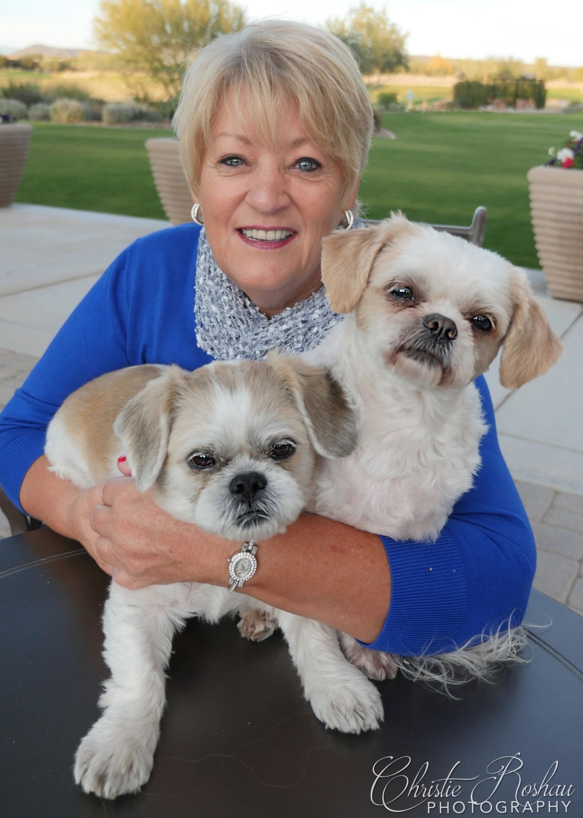 Pet Photography –Christie Roshau-Lukes Photography.jpg