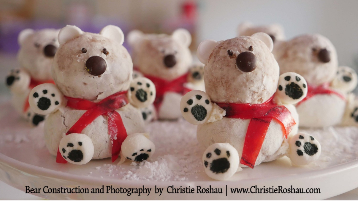 Donut Bears –Christie Roshau-Lukes Photography.jpg