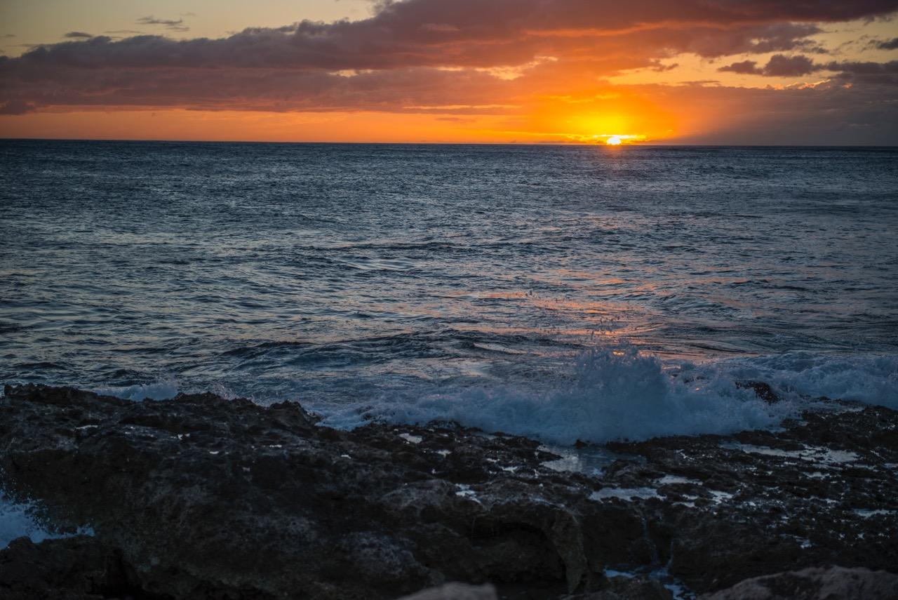 Oahu2016-7499.jpeg