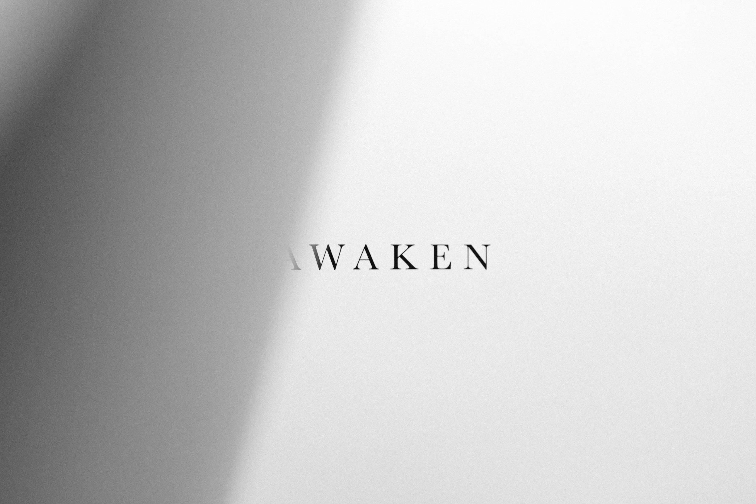 AWAKEN by Sarah Rose_Photo Book.jpg