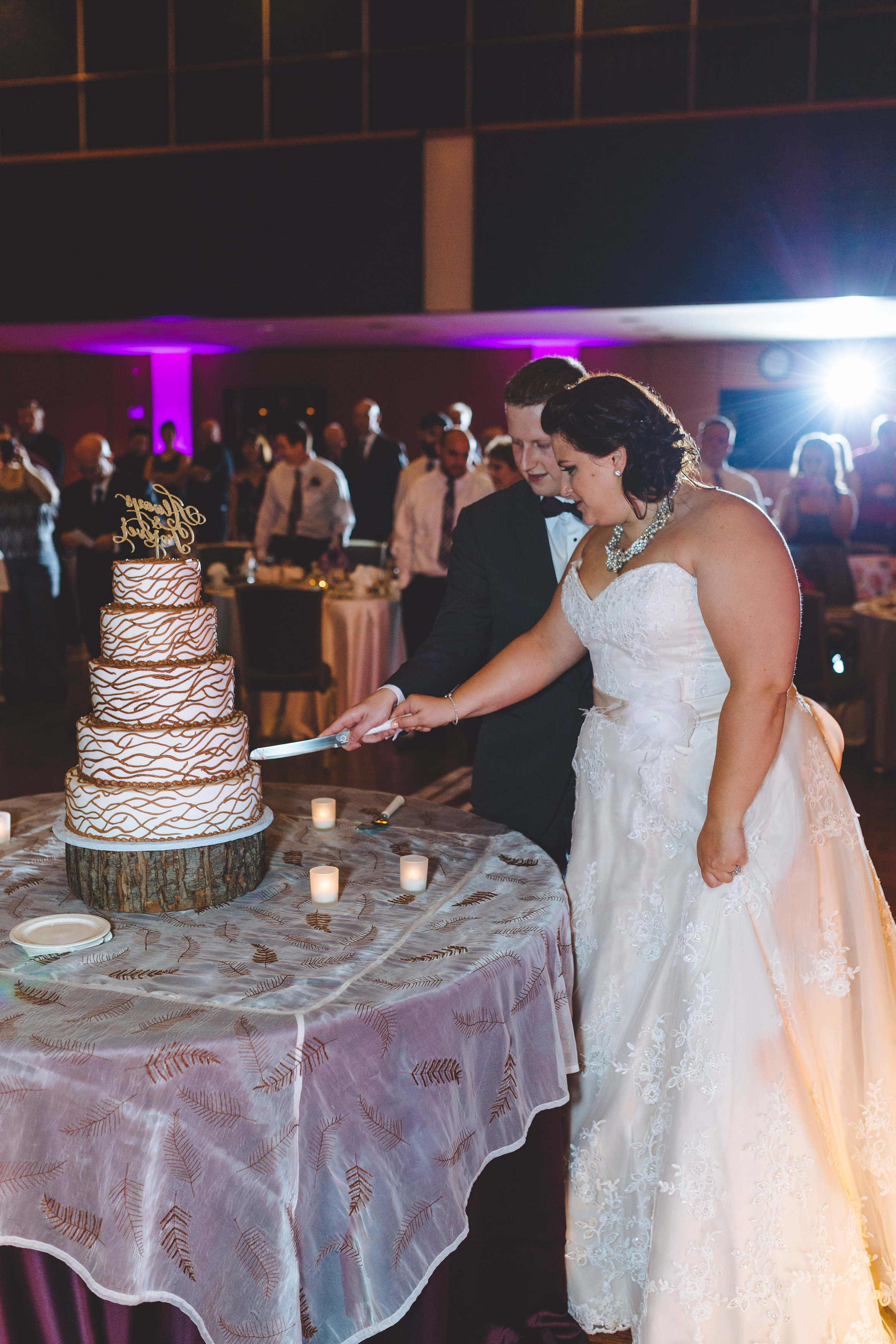 Bride_and_groom_cut_cake_Kent_Ohio