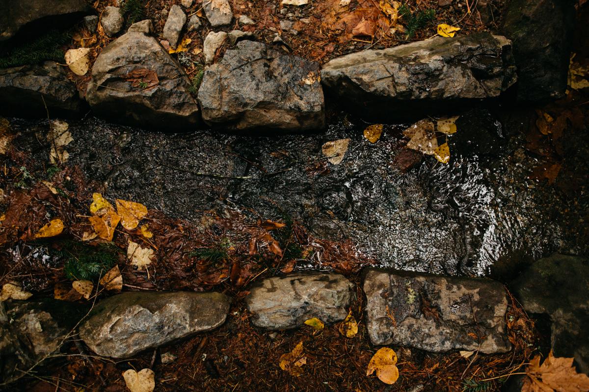 Stream_on_Mount_Si_Trail