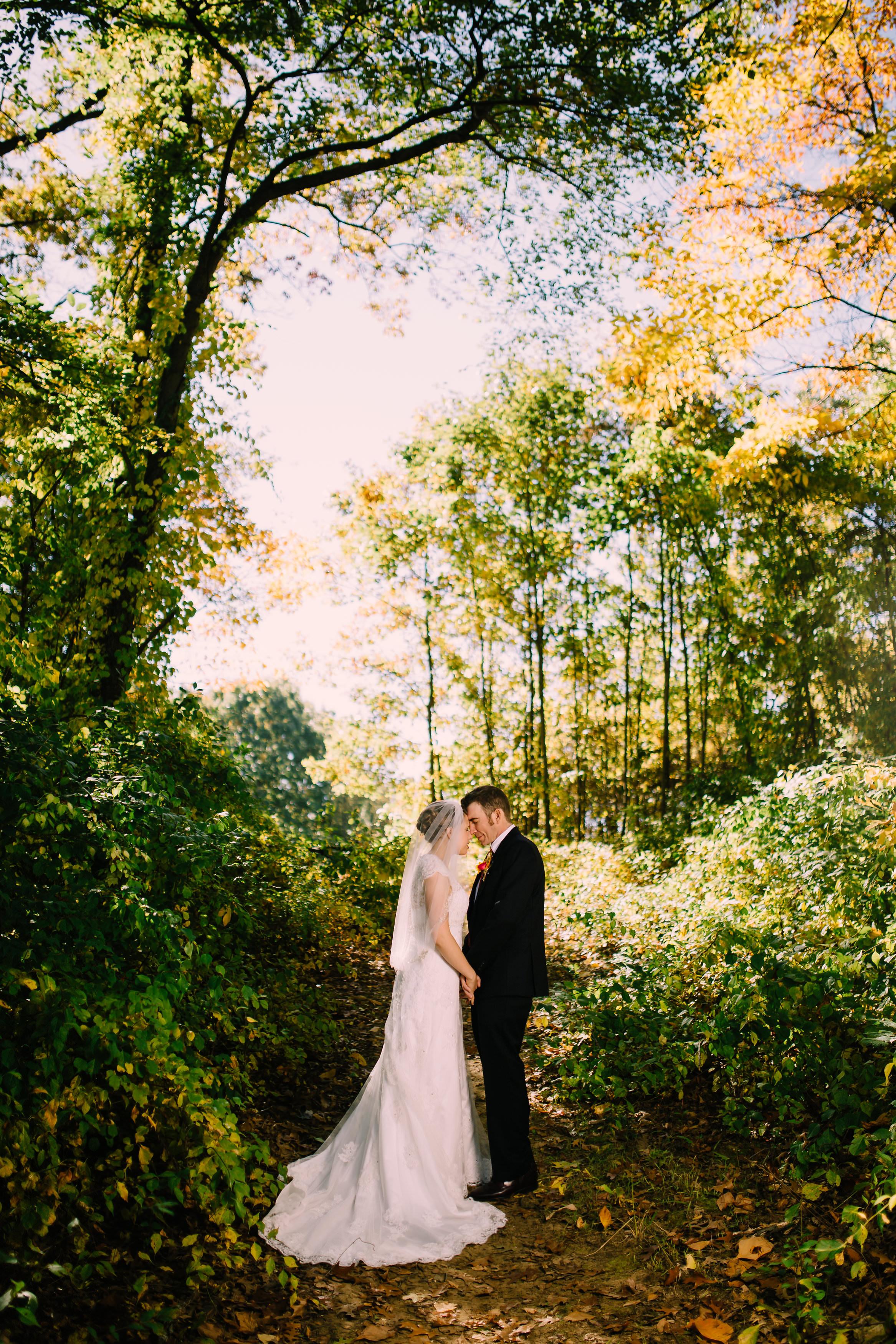 Beautiful bride and groom portraits at Wildwood Metropark