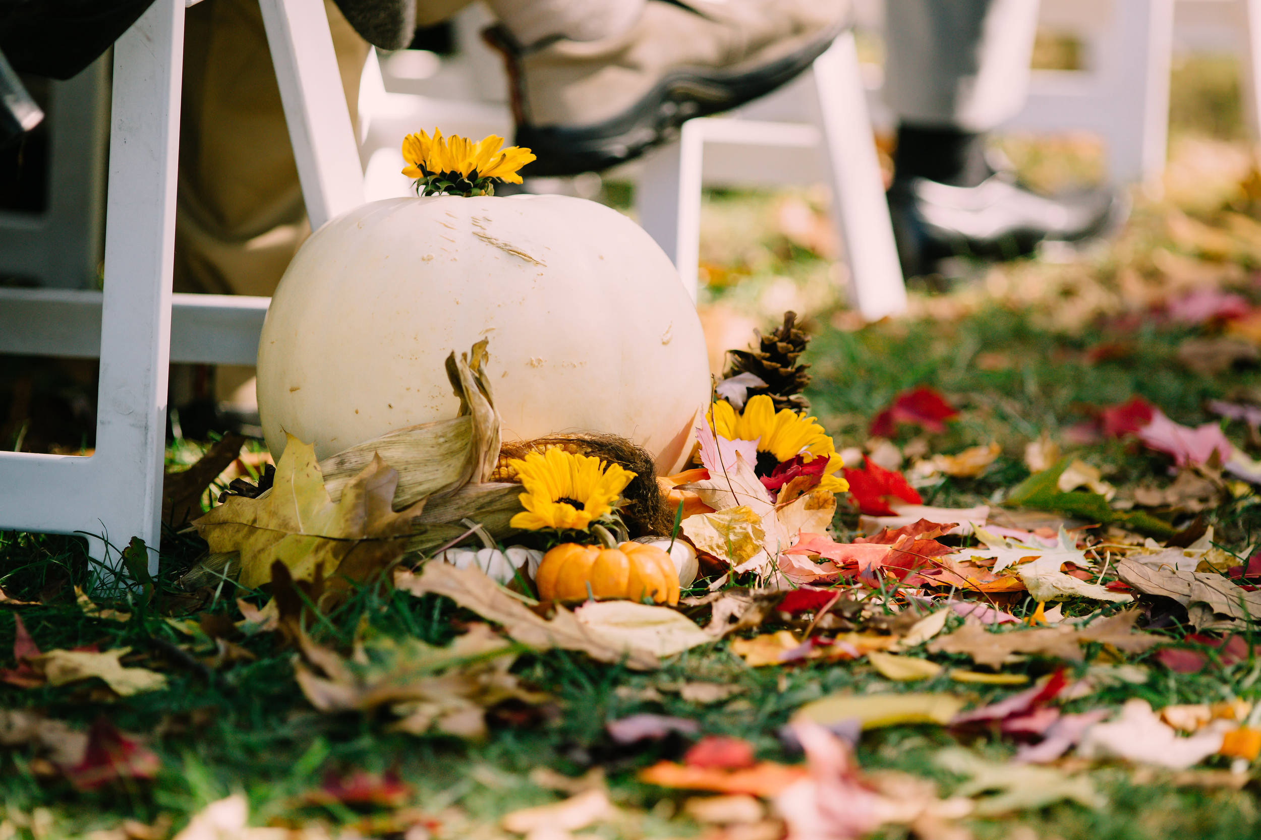 Fall leaves and pumpkins used as aisle runner and decor