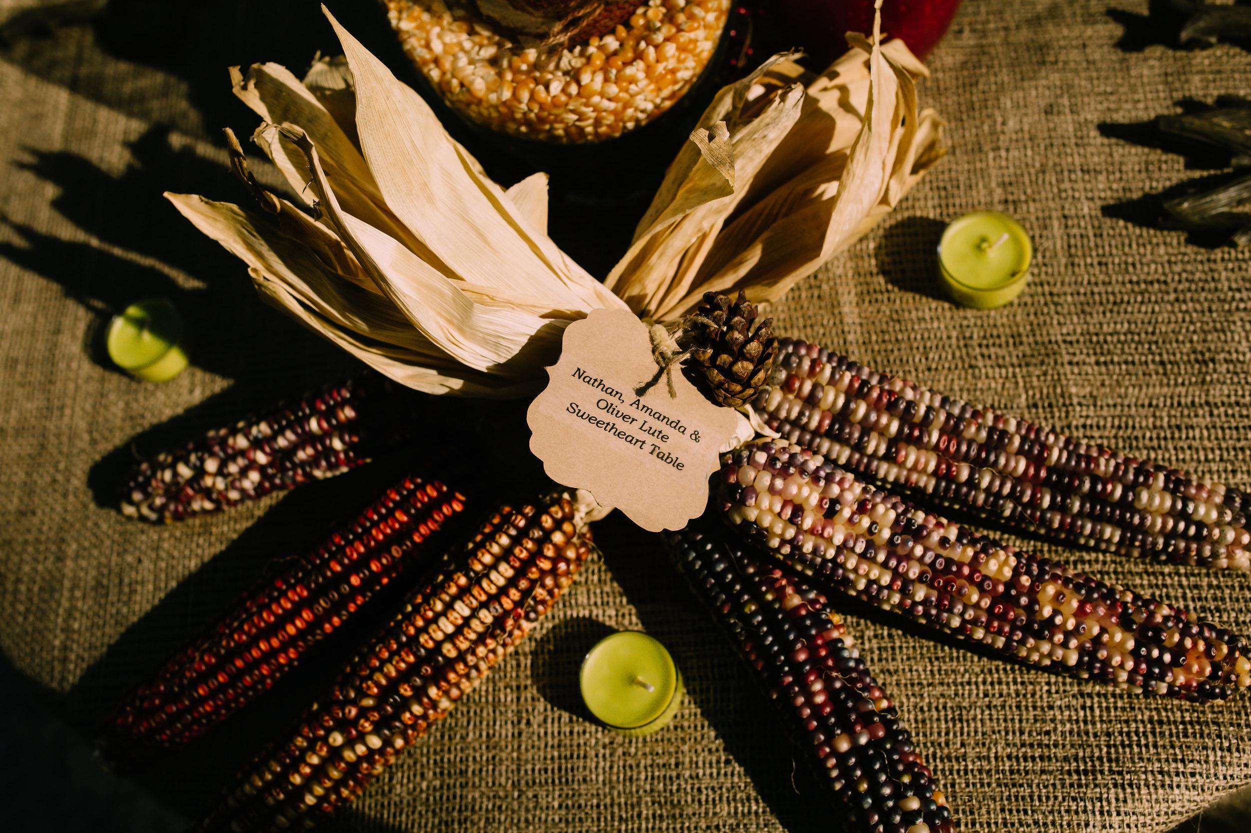 Bride and groom used corn stalks as fall wedding decor