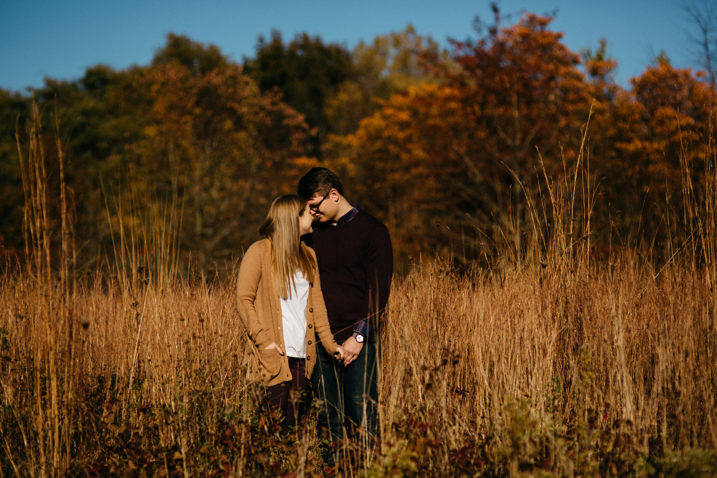 Bowling Green, Ohio engagement session in the Fall