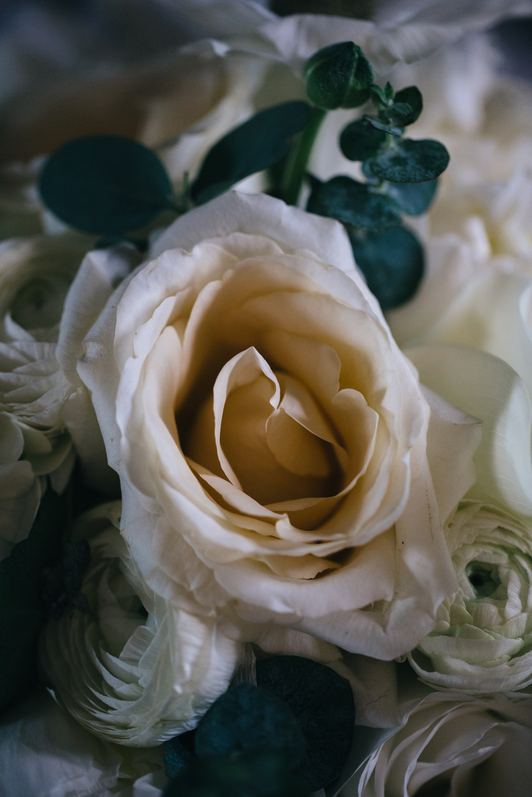Beautiful bridal bouquet with a white rose and eucalyptus.