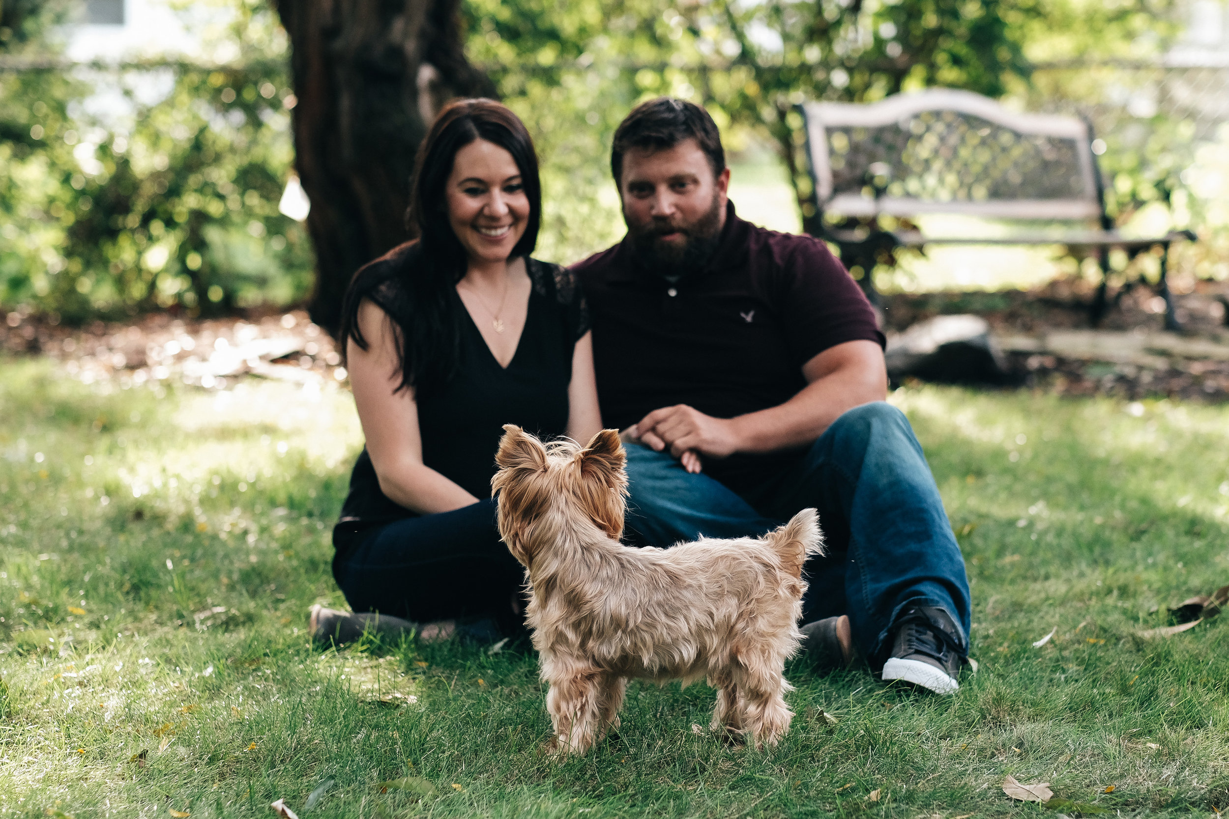 Dog engagement session in Perrysburg, Ohio.