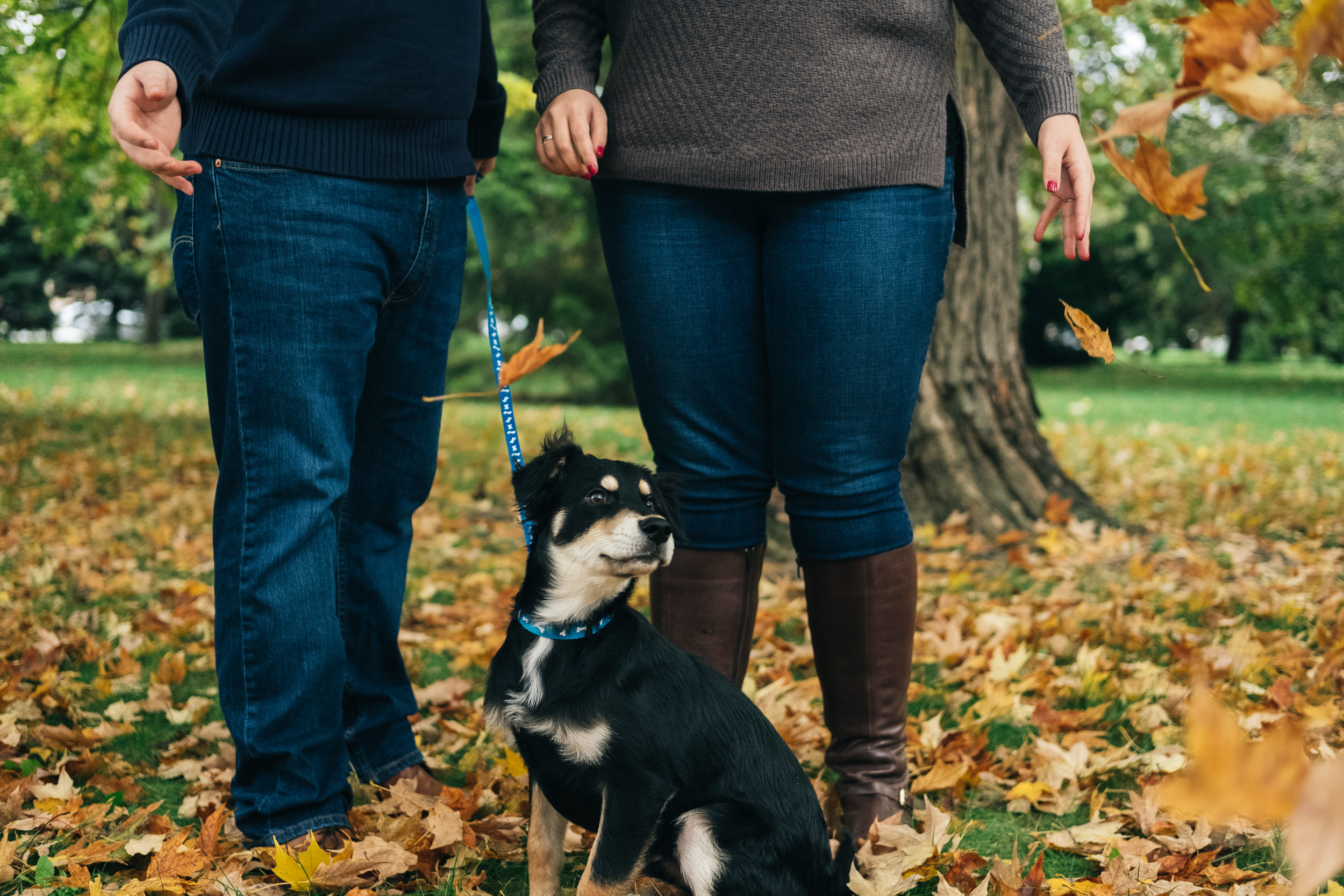 Downtown Toledo fall engagement session with the couple's dog.