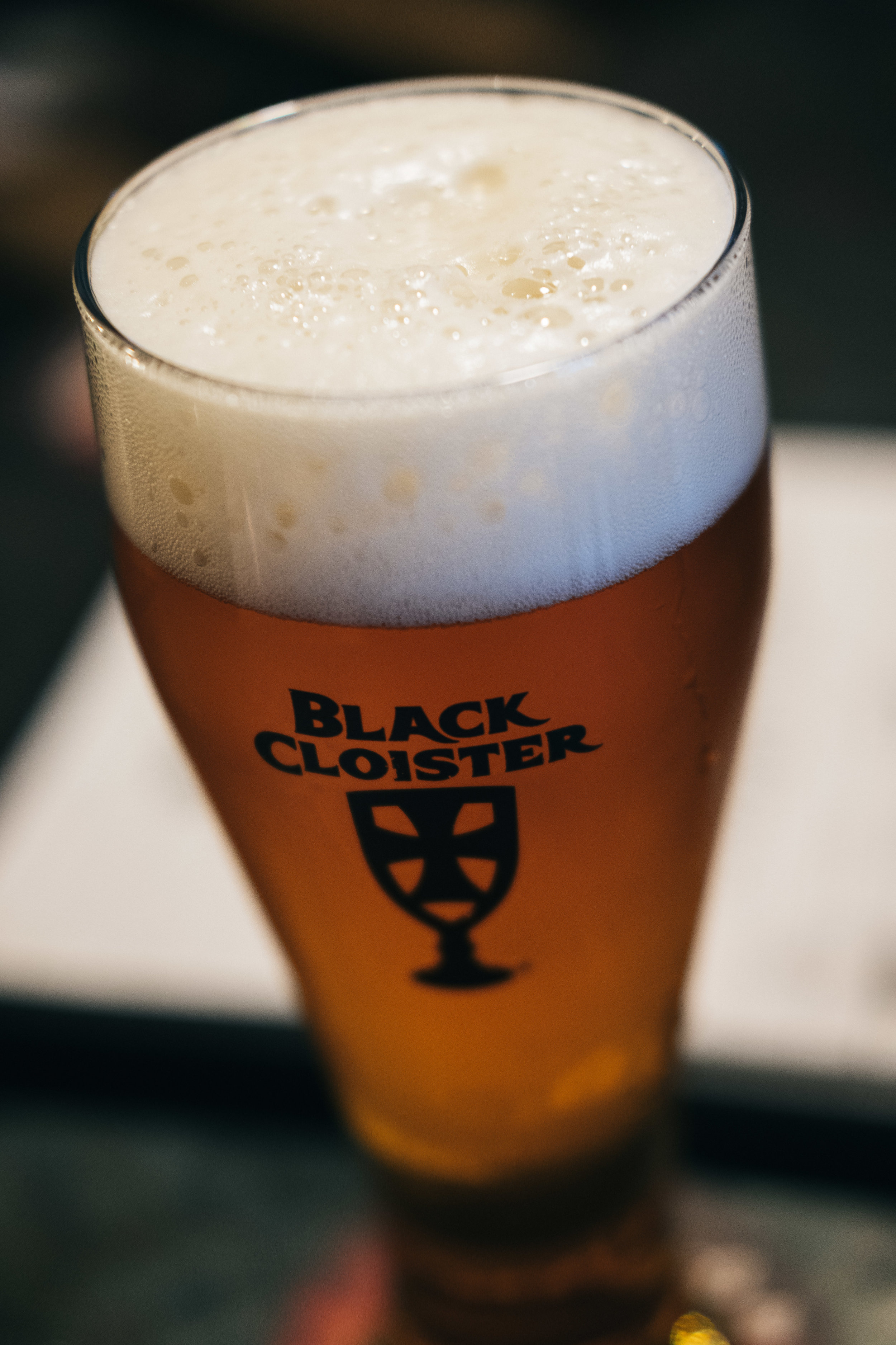 Black Cloister Beer in downtown Toledo for fall engagement session.