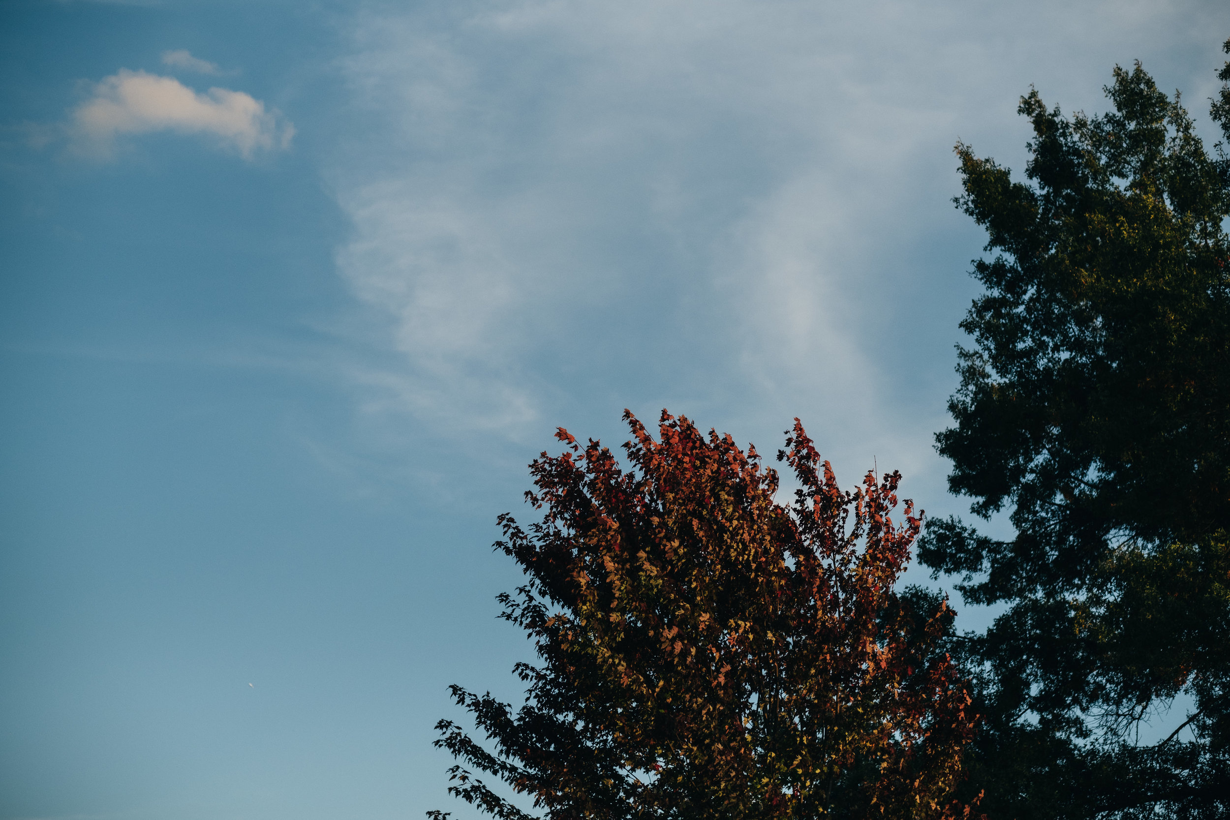Beautiful blue sky during fall engagement session in Michigan.