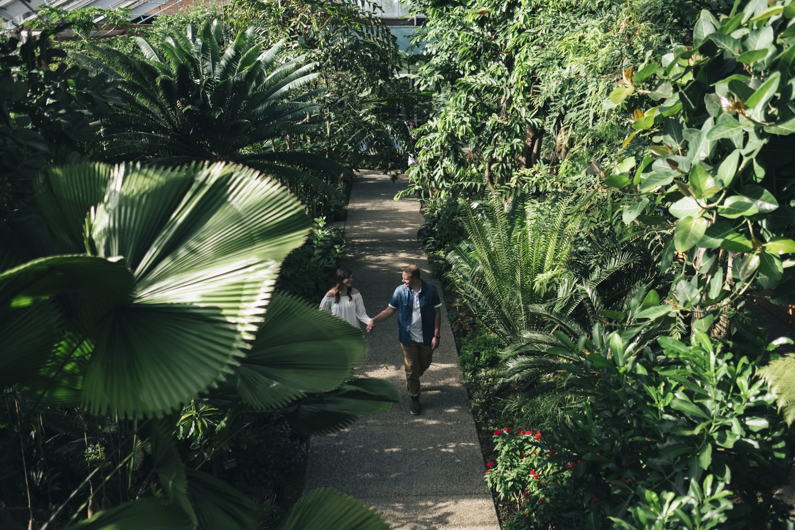 Beautiful engagement session surrounded by greenery at conservatory in Ann Arbor.