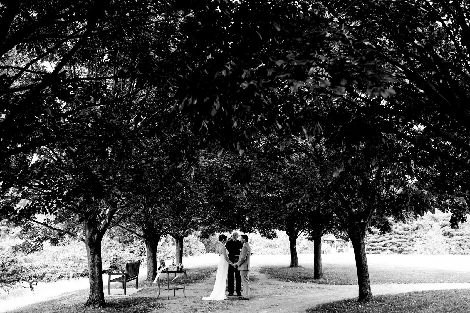 Toledo, Ohio elopement at the Toledo Botanical Gardens.