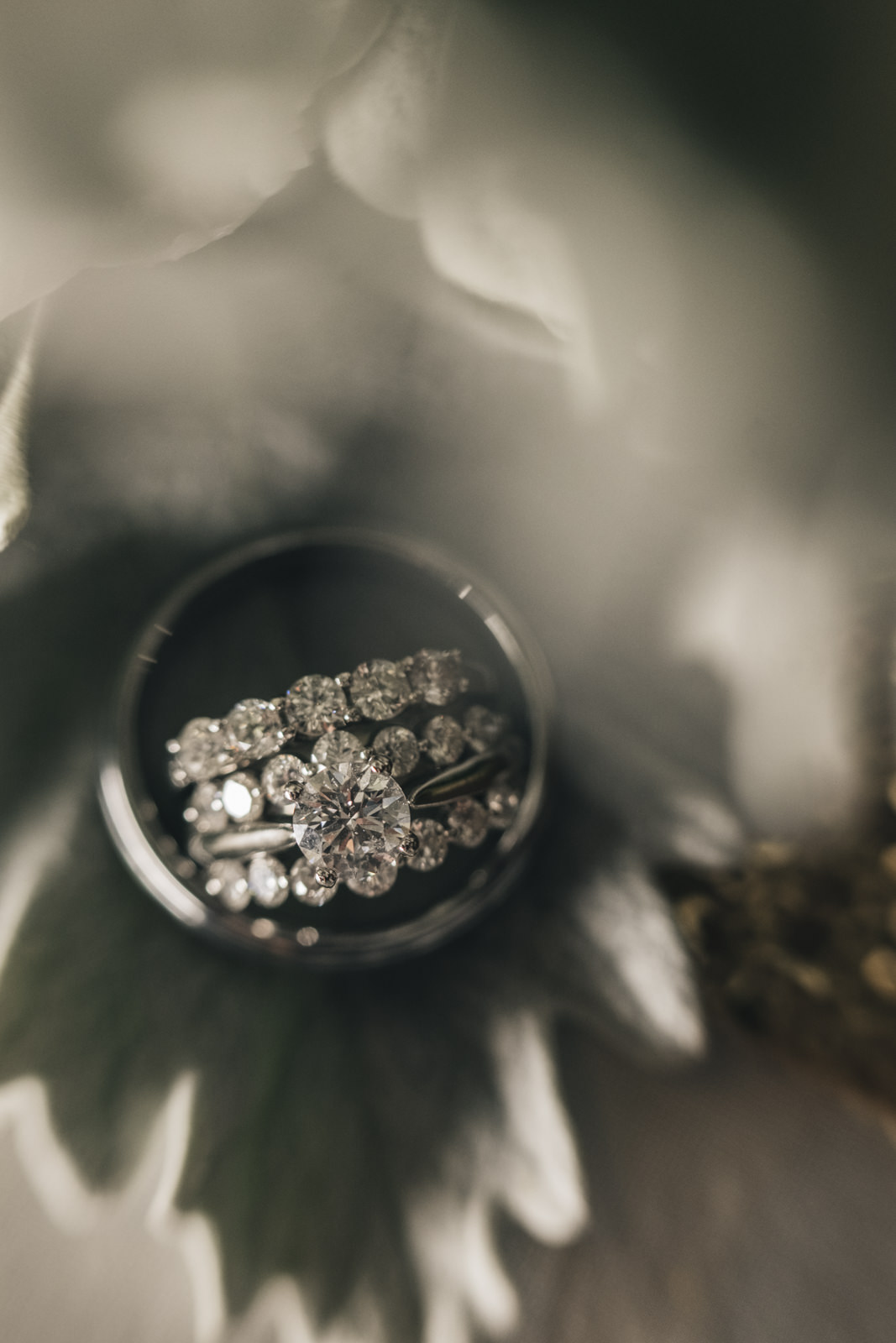 Picture of the wedding ring sitting in flowers at a Toledo wedding.