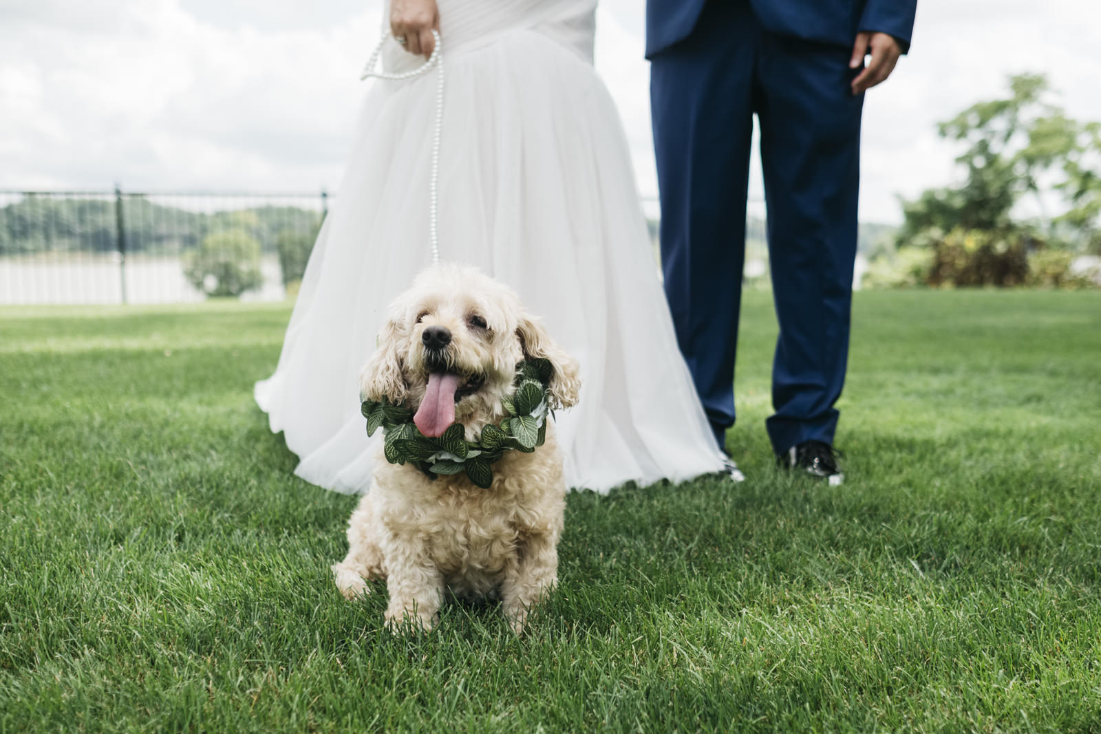 The bride and groom's dog even jumped in a for a few pictures during their creative session!