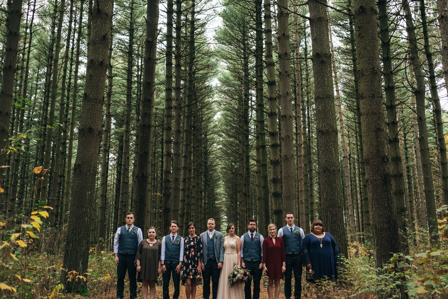 Bridal party lines up near tall oak and pine trees at Oak Openings park