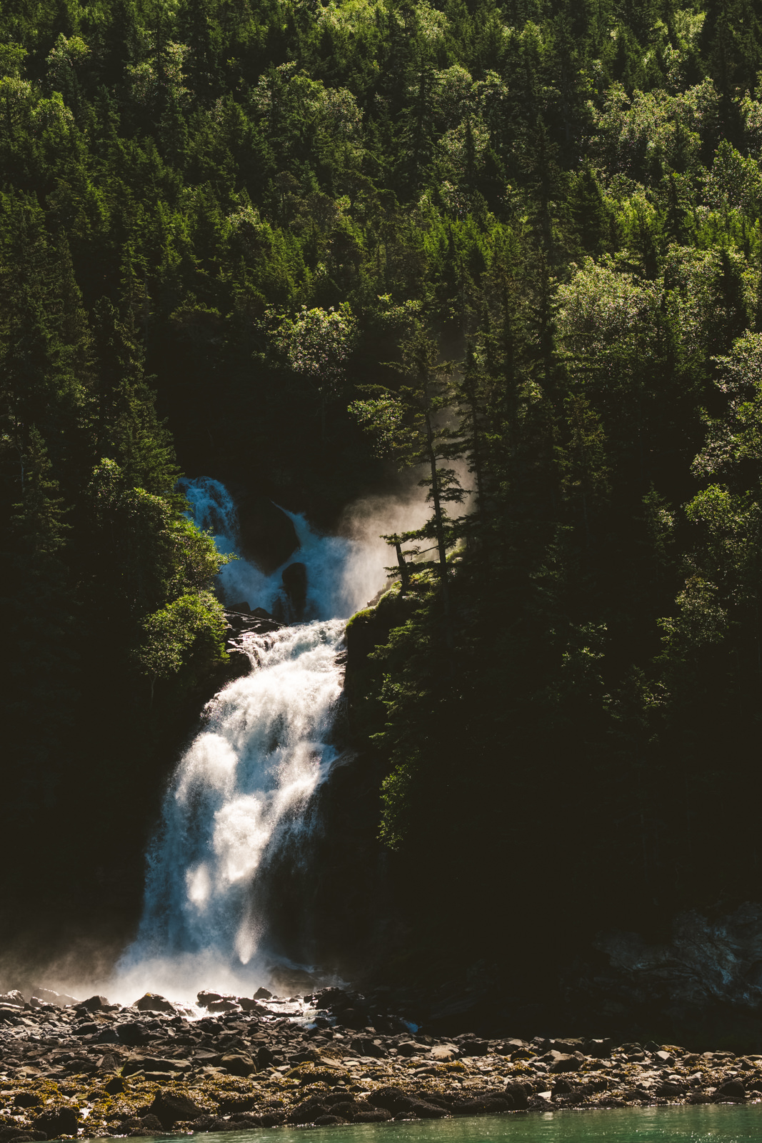 waterfall and forest in alaska captured by destination photographers