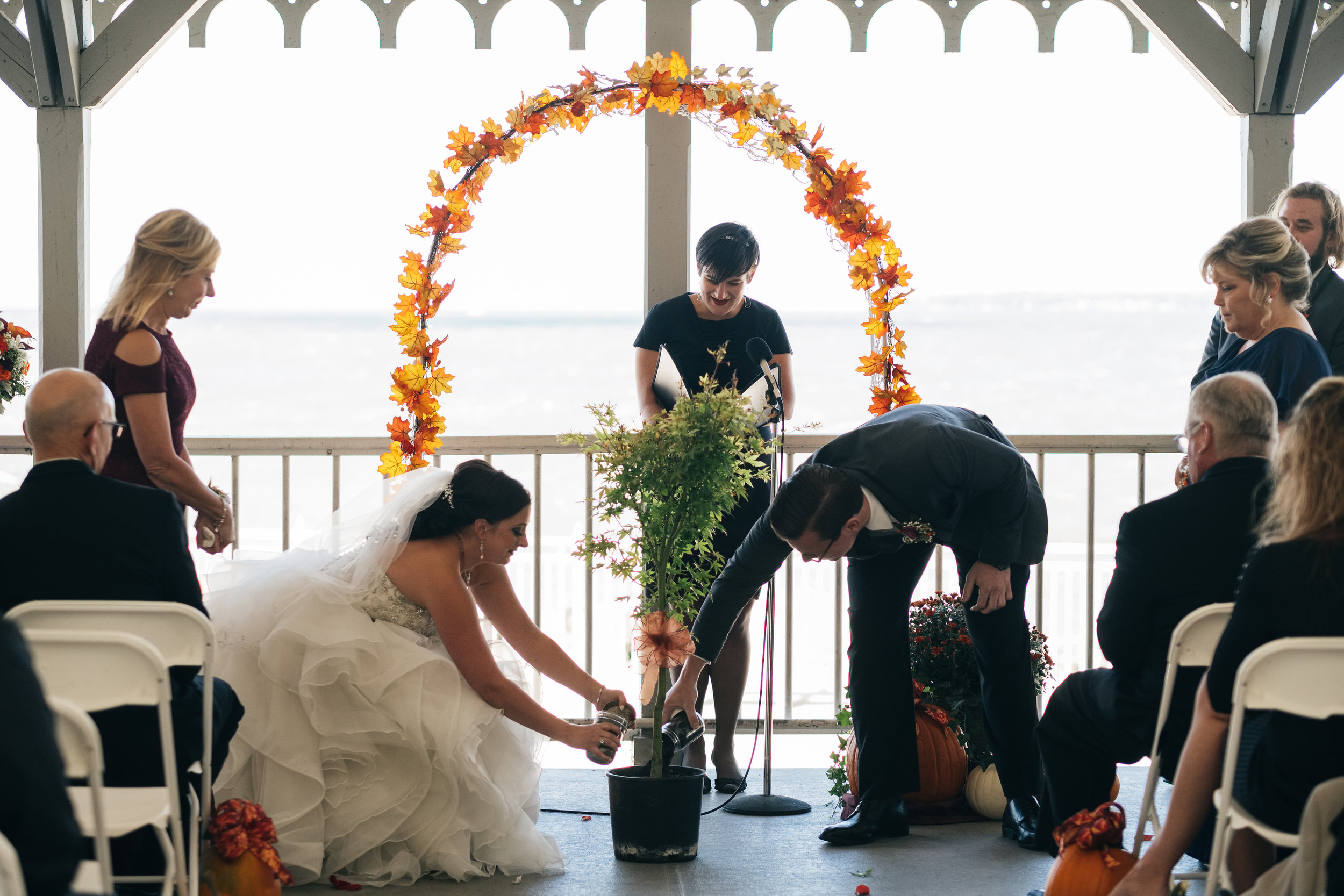 Toledo Couple Plants Tree at Unity Ceremony in Ohio With Photographers from Northwest Ohio