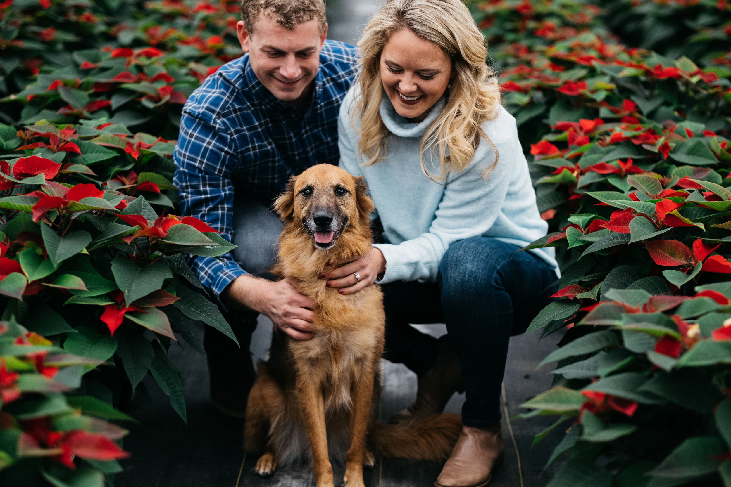 Schmidt Brothers Greenhouse Engagement Session with Toledo Couple and Photographers from Ohio