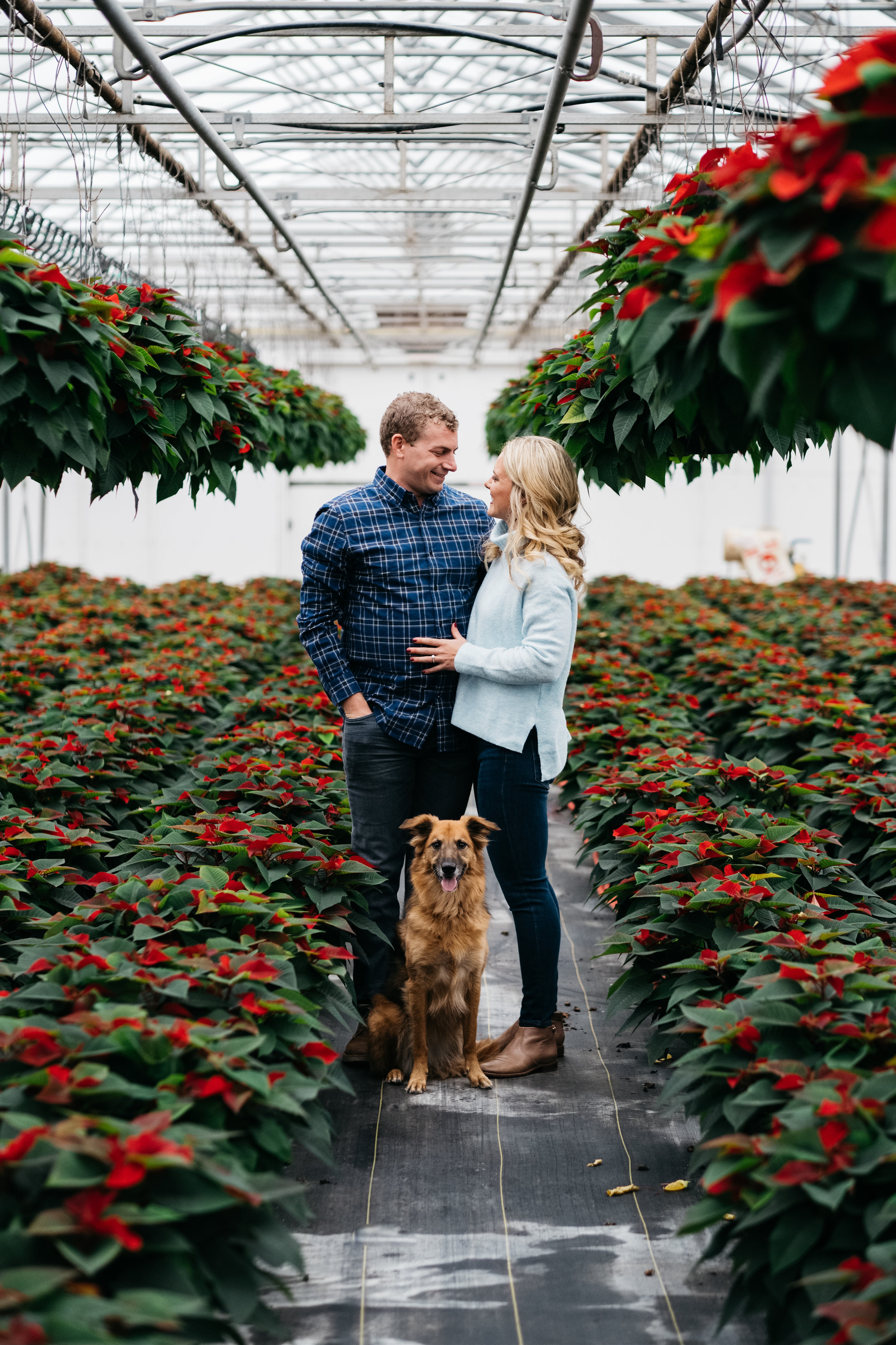 Indoor Engagement Session with Toledo Wedding Photographers and Ohio Couple