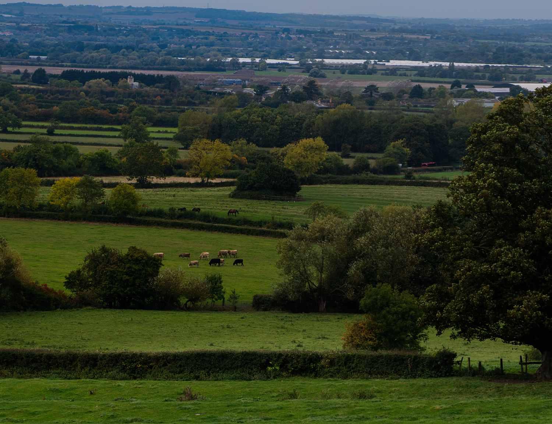 Day2-Panorama-Fields.jpg