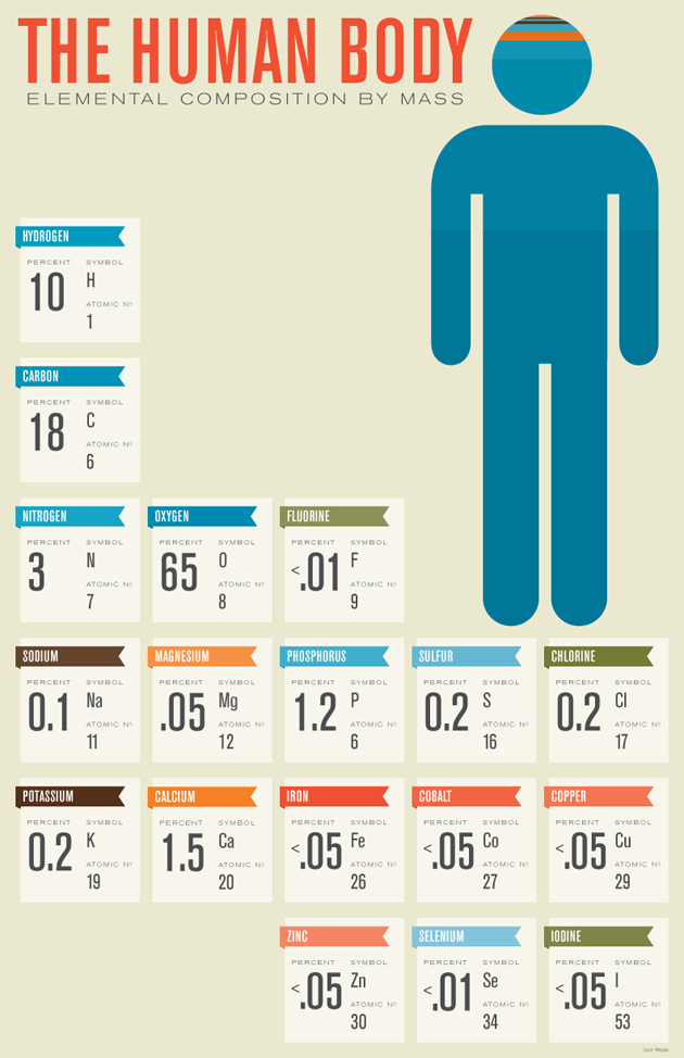humanbodycomposition.jpg