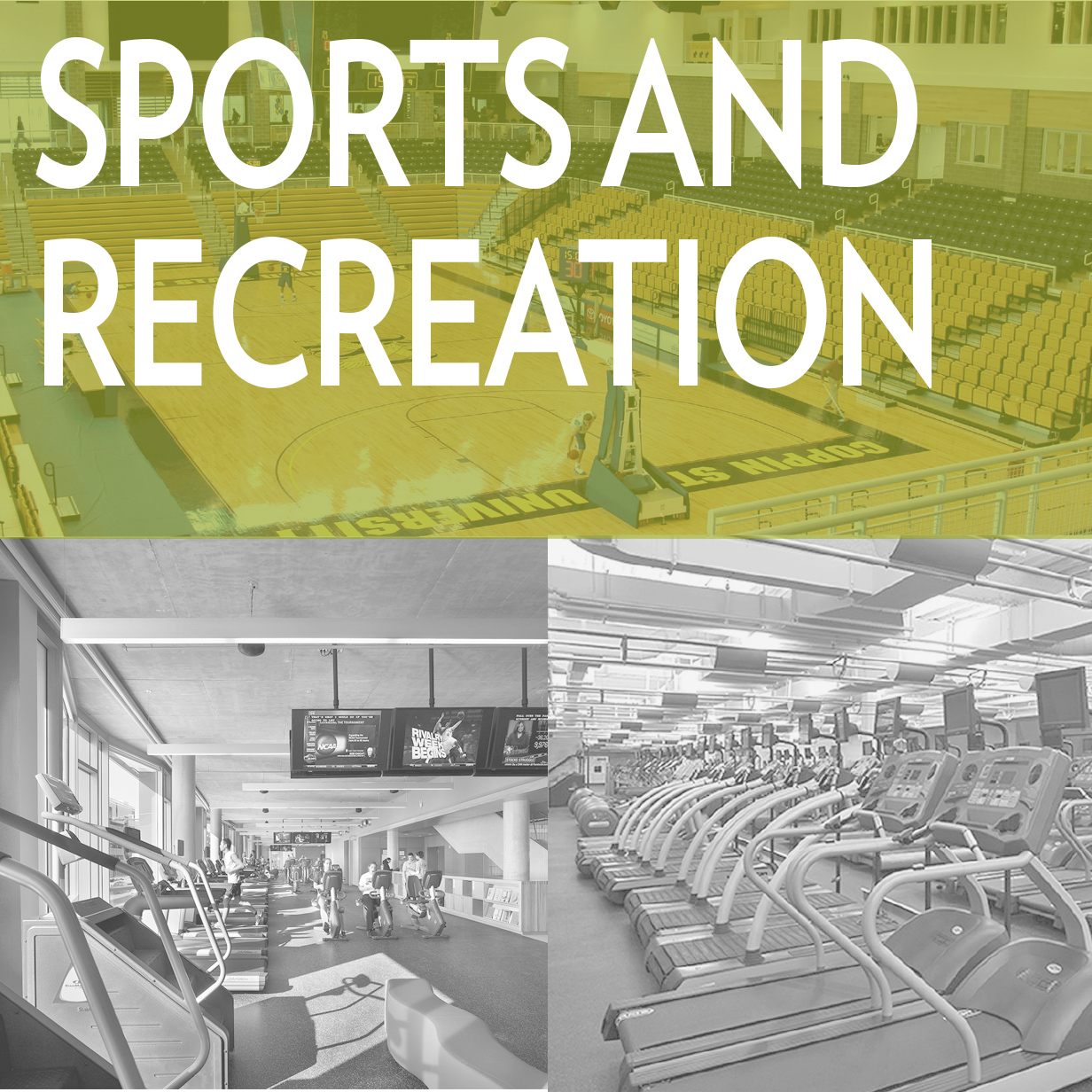 Sports and Recreation.jpg