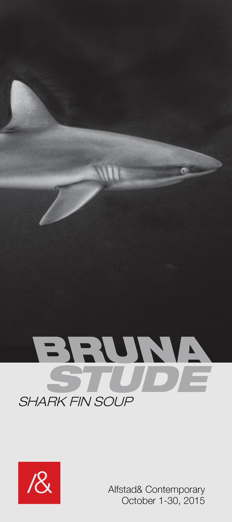 brune_stude_rackcard_f2-1.png
