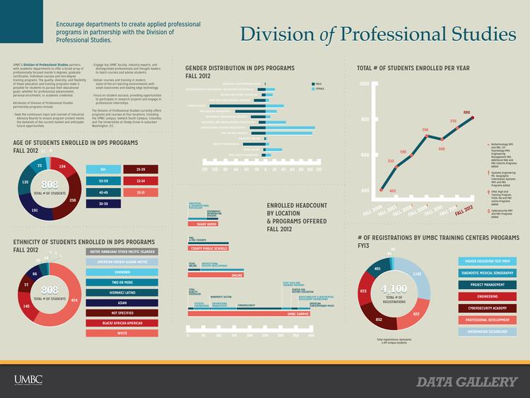 15 DivisionOfProfessionalStudies.png