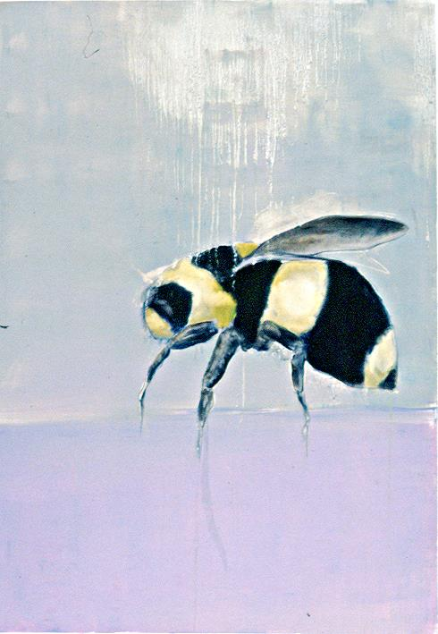 Bumble Bee on Pink