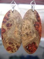 Robertson earrings200.jpg