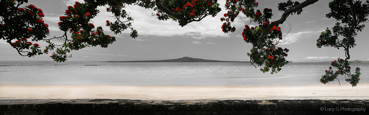 'Kohi Paradise' (b/w with red)