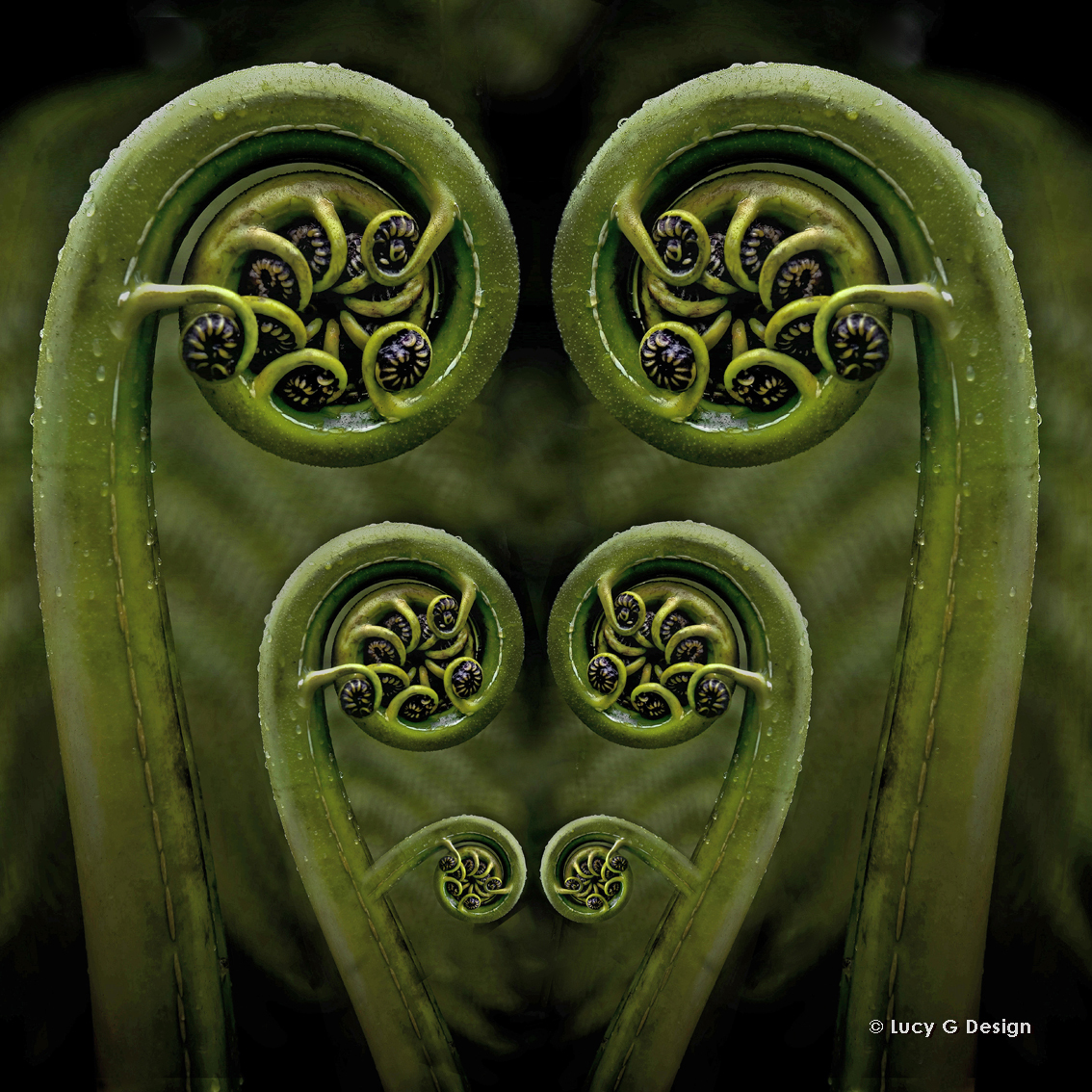 'Fern frond' 51x51cm glass wall art