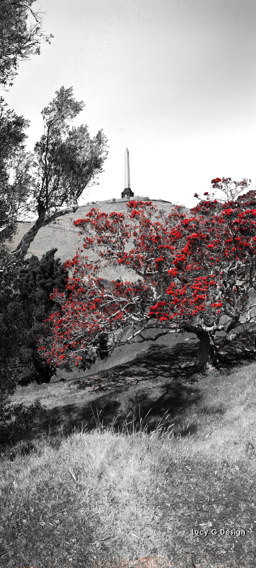 'One Tree Hill' b/w with red 51x102cm glass wall art