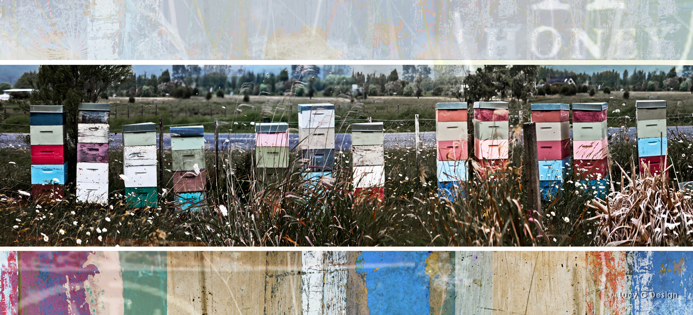 'Hives collage' 51x102cm glass wall art