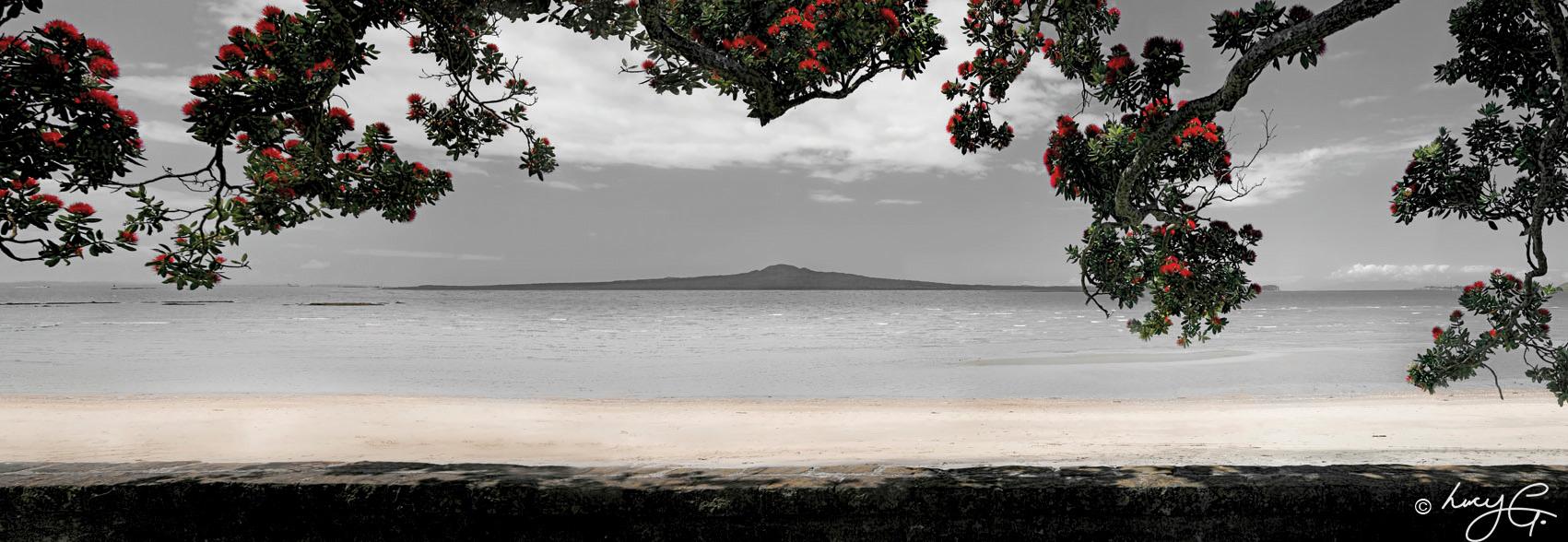 Kohi paradise rangitoto printed image on glass splashback