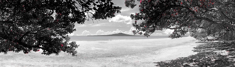 takapuna in summer bw lr.jpg