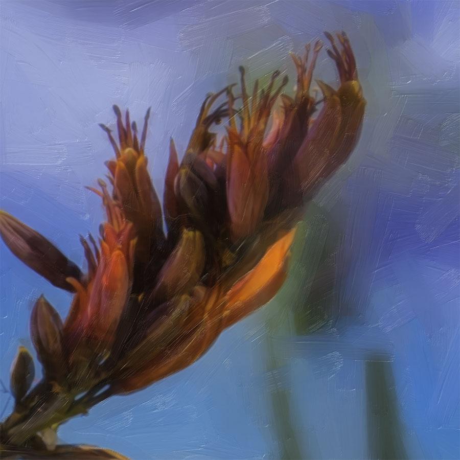 flax buds printed image splashback lucy g detail 2.jpg